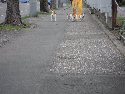 2012_05_13_04