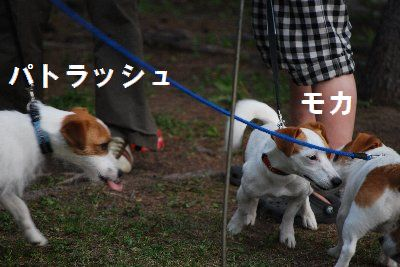 2012_07_01_26