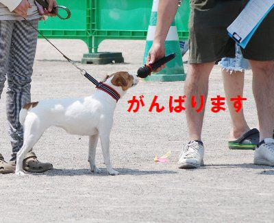 2012_07_01_35_2
